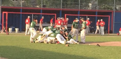 Baseball punches ticket to State for second straight year