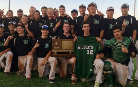 Baseball claims first state title