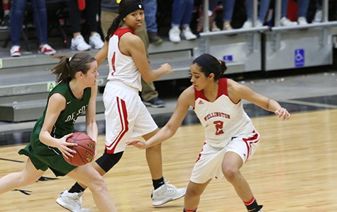 Girls' basketball nearly pulls upset over undefeated Wellington at State Tournament