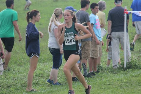 Cross country has successful conference meet