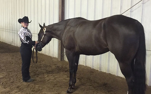 Junior Brynn McCracken stands with her horse at a horse show competition.