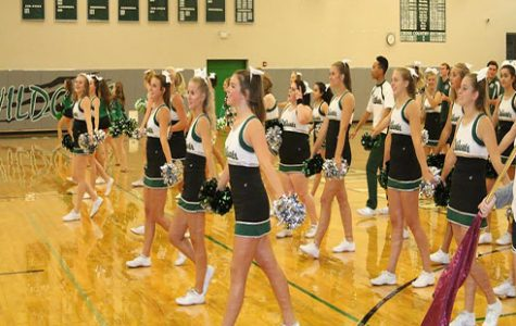 The De Soto High School cheer team performs on Freshman Day.