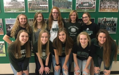 Volleyball Team Wins All Academic Award