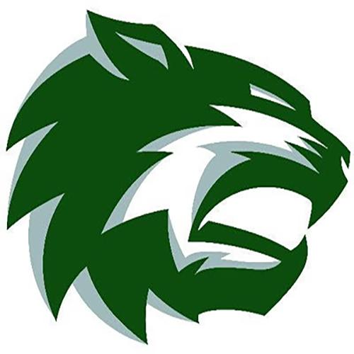 The new logo that was debuted on the De Soto twitter on Feb 16