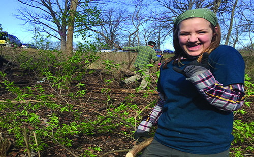 Sophomore Aspen Grieshaber pulls honeysuckle from the woods on Saturday, Sept. 30