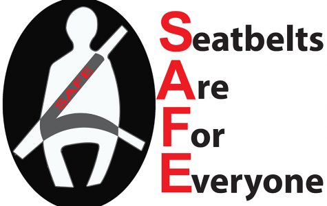 LITE Team enforces seatbelt safety