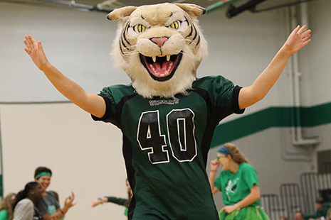 School mascot, Willy the Wildcat, participates in the flash mob and then hypes the crowd up at the beginning of the assembly.