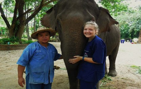 Student travels to Asia to take care of elephants