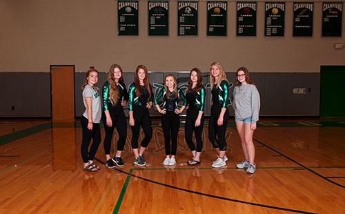 The De Soto gymnastics team poses for their team pictures.