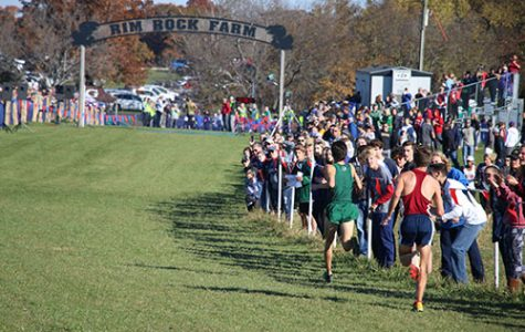 Boys cross country succeeds at state