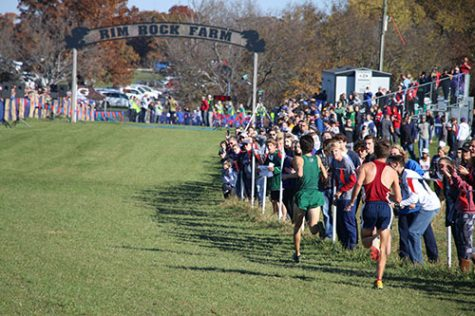 De Soto cross country sweeps home race