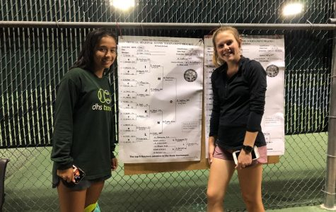 Tennis sends two to state