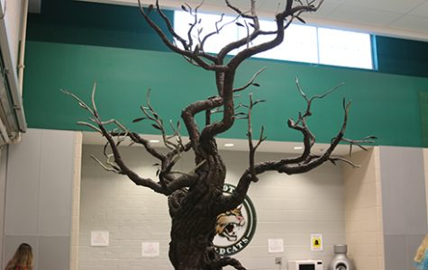 New sculpture opens opportunity for students to leave lasting mark at DHS